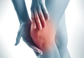 body-knee